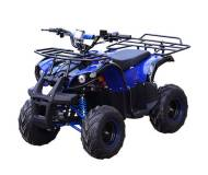 Детский квадроцикл Profi HB-EATV 800N